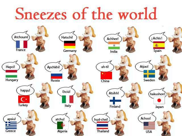 estornudos del mundo