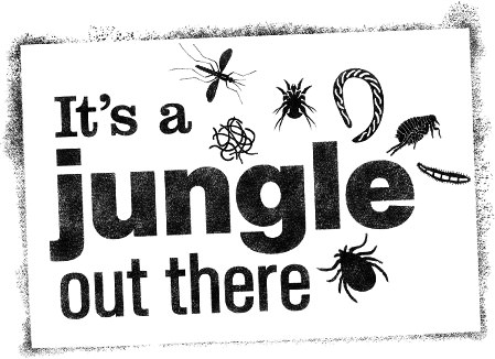 its-a-jungle-out-there-logo