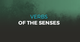 Verbs of the senses