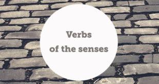 verbs-of-the-senses-aba-english