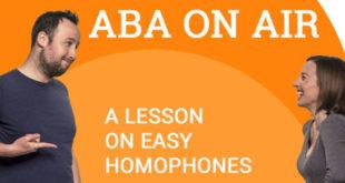 1-1 Understanding Homophones