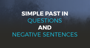 Simple past in questions and negative sentences