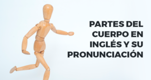 Partes-del-cuerpo-en-inglés-y-su-pronunciación-abaenglish