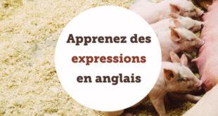 Apprenez des expressions en anglais ABA English