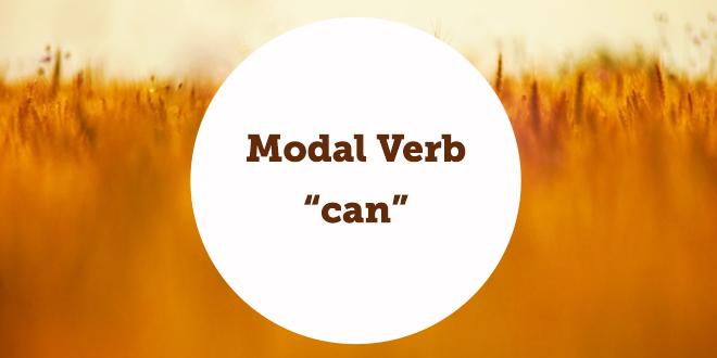 grammaire interm u00e9diaire  u2013 modal verb  u201ccan u201d
