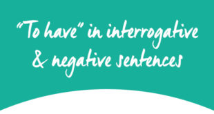 To have negative interrogative ABA English