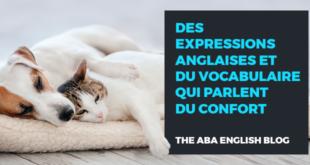 Des-expressions-anglaises-et-du-vocabulaire-qui-parlent-du-confort-abaenglish
