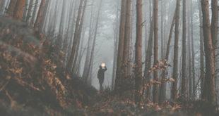 horror-movies-abaenglish