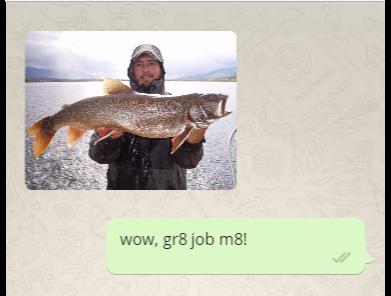 gr8-whatsapp-screenshot-abaenglish