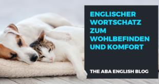 Englischer-Wortschatz-zum-Wohlbefinden-und-Komfort-abaenglish